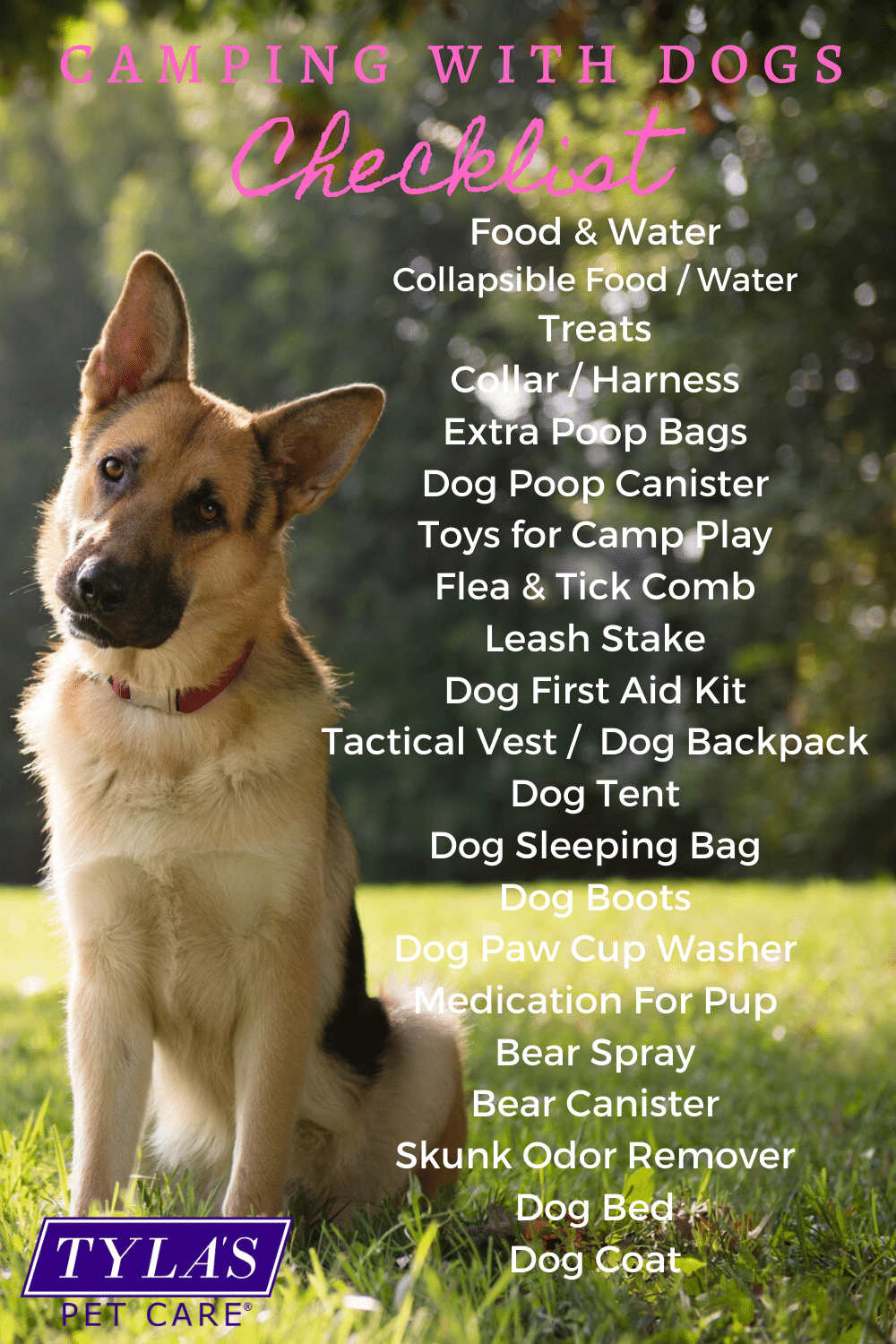 Camping With Dogs Gear List