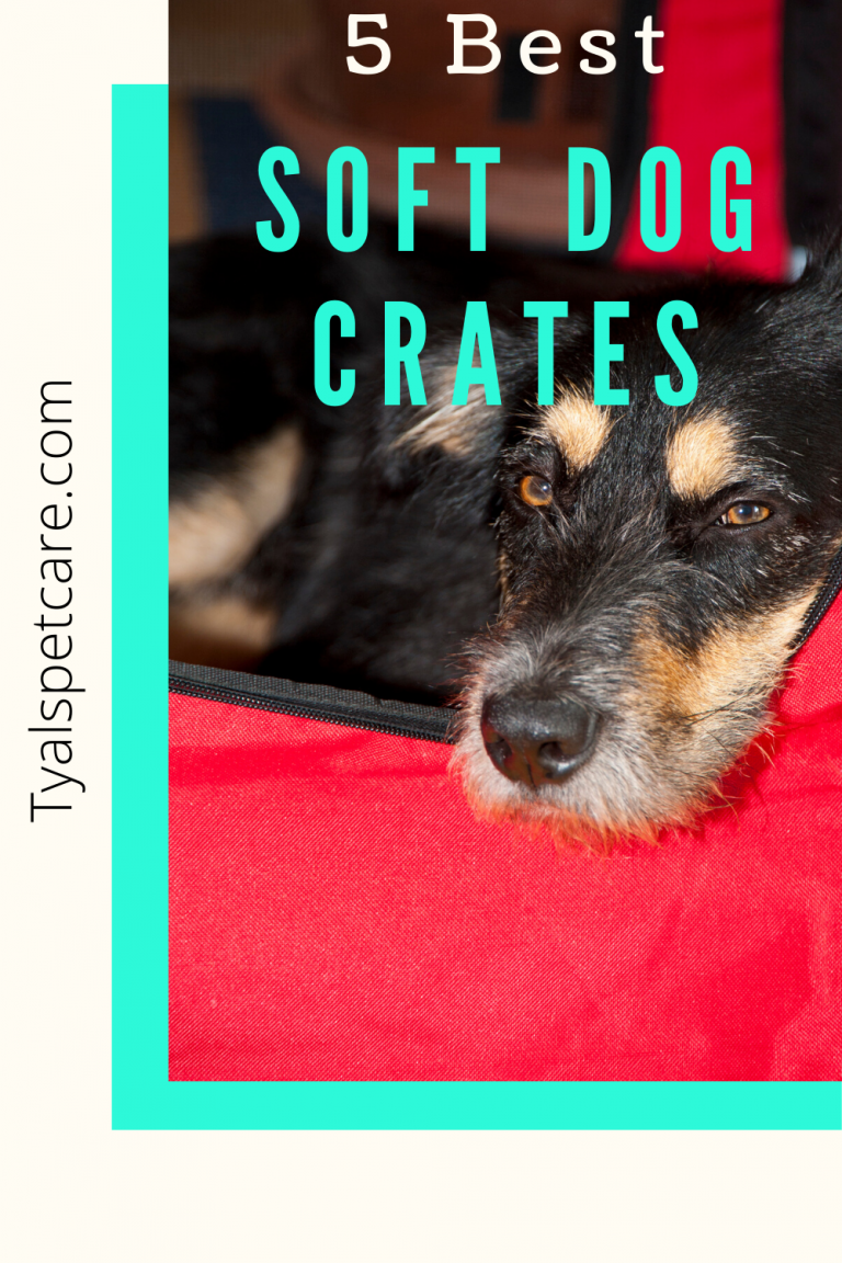 5 best soft dog crates