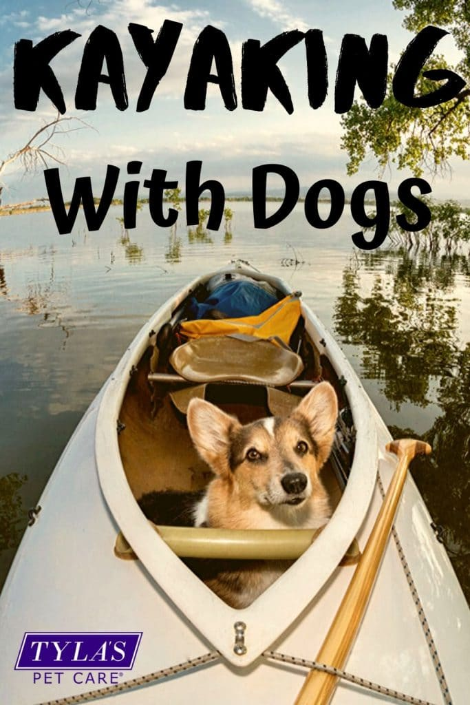 canoeing with your dog