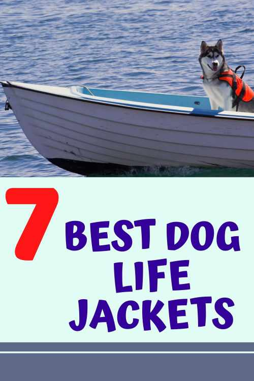 Best rated dog life jackets