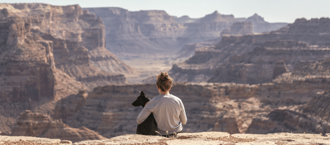 dog-friendly national parks & forests